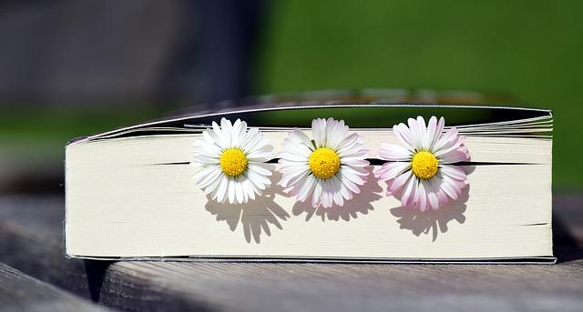 sedmikrásky v knize